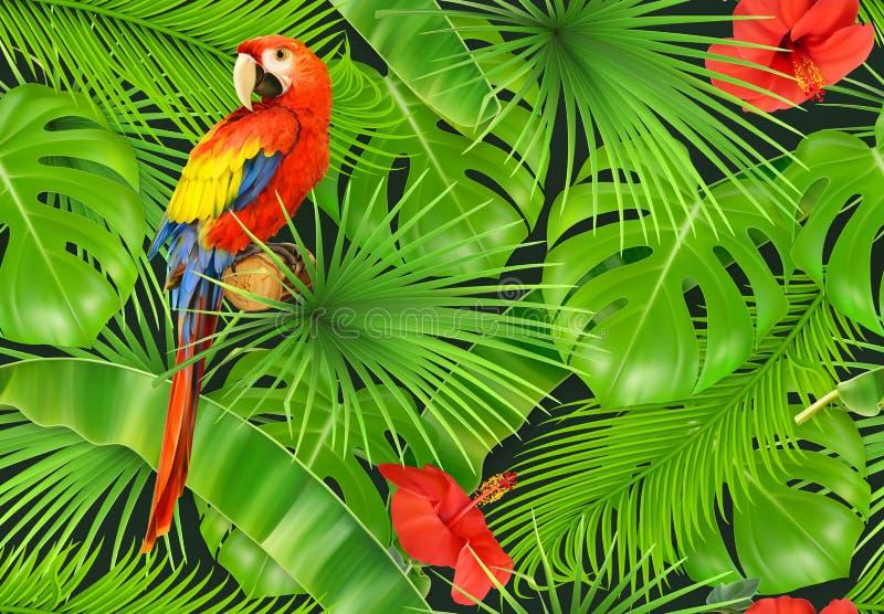 Folhas da selva e papagaio, teste padrão sem emenda Fundo do vetor ilustração stock
