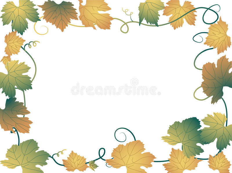 Folhas da videira ilustração royalty free