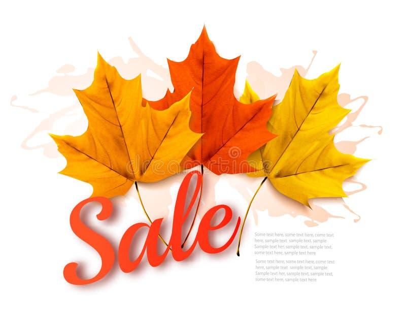 Folhas de Autumn Sales Banner With Colorful ilustração do vetor
