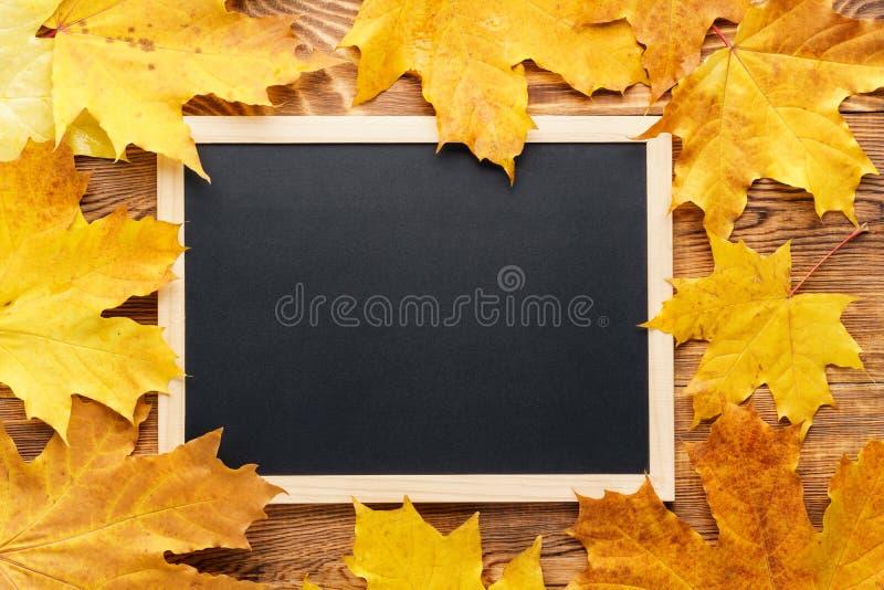 Folhas de bordo amarelas em torno de um quadro De volta ao conceito da escola foto de stock royalty free