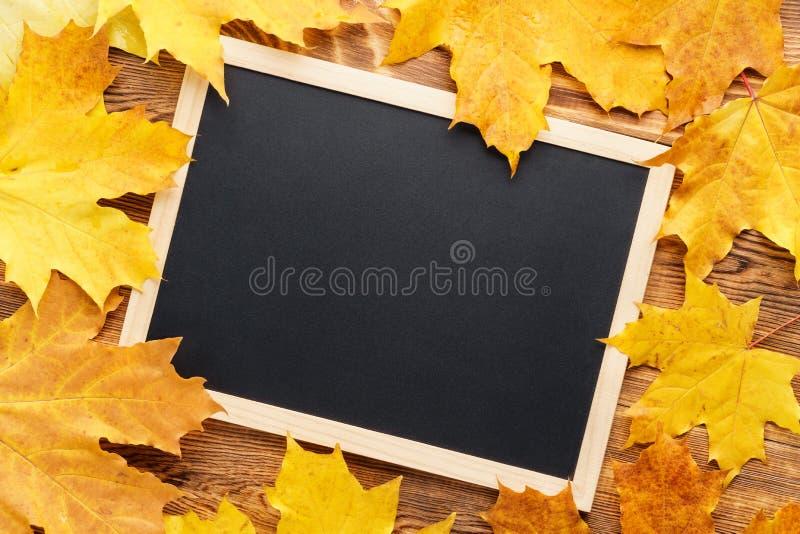 Folhas de bordo amarelas em torno de um quadro De volta ao conceito da escola imagem de stock