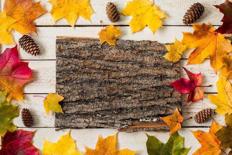 Folhas de bordo coloridas da queda na tabela de madeira r?stica imagens de stock