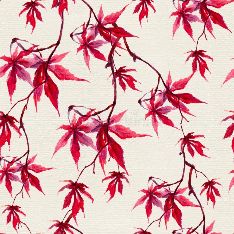 Folhas de bordo vermelhas chinesas do outono Teste padrão sem emenda watercolor foto de stock