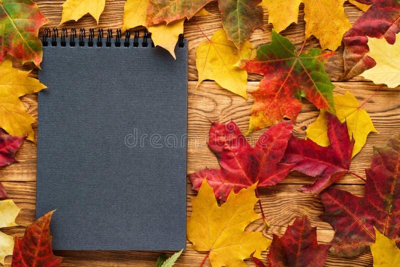 Folhas de bordo vermelhas e amarelas em torno do caderno vazio preto fotografia de stock royalty free