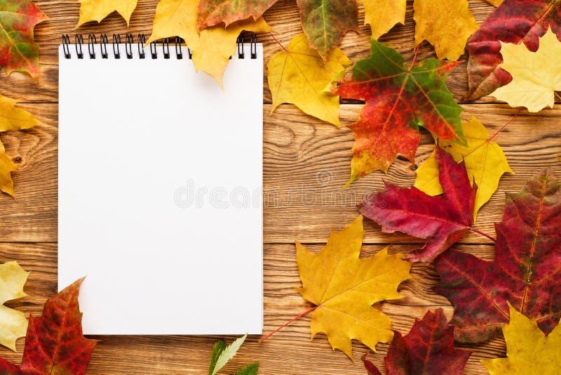 Folhas de bordo vermelhas e amarelas em torno do caderno vazio fotos de stock royalty free