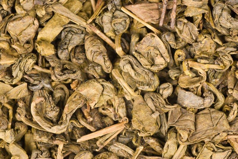 Folhas de chá verde secas imagens de stock royalty free