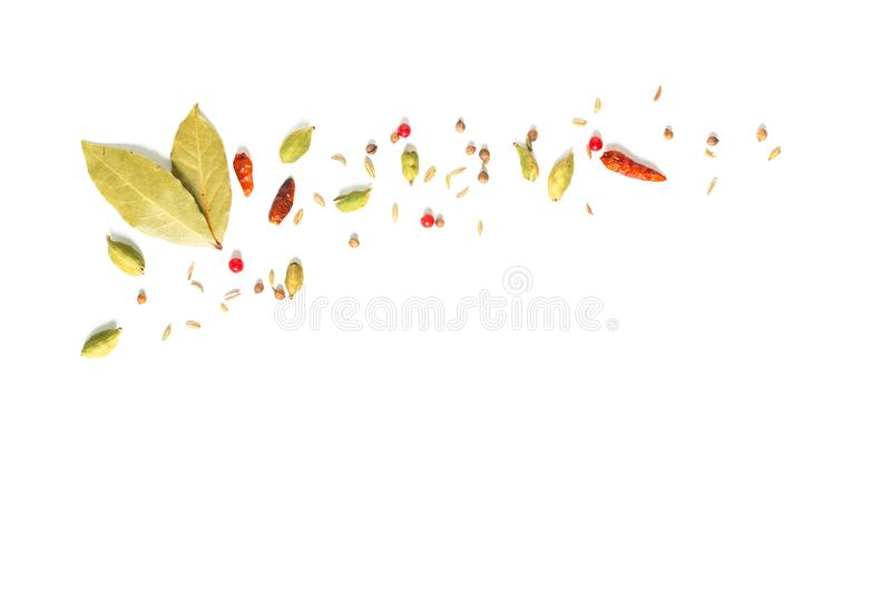 Folhas de louro da especiaria do conceito do alimento do fundo várias, pimentão, semente de coentro vagens do cardamomo e semente fotografia de stock royalty free