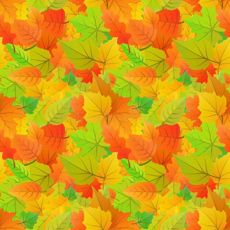 Folhas de outono bonitos do tipo diferente das árvores, teste padrão sem emenda ilustração royalty free