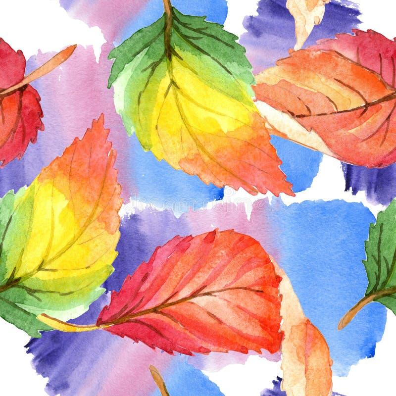 Folhas de outono coloridas da aquarela Folha floral do jardim botânico da planta da folha Teste padrão sem emenda do fundo ilustração do vetor