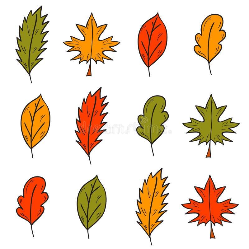 Folhas de outono coloridas tiradas mão dos desenhos animados do vetor ilustração stock