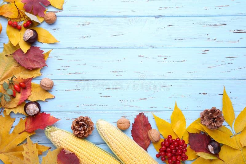 Folhas de outono com bagas e vegetais em um fundo azul foto de stock royalty free
