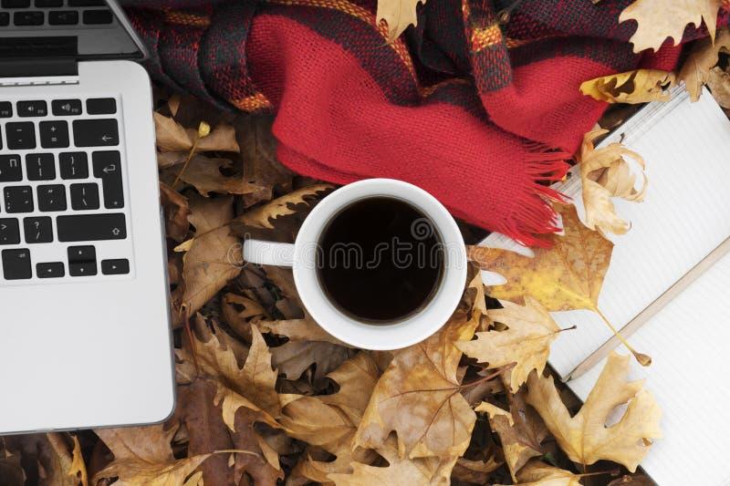 Folhas de outono com xícara de café, portátil e caderno fotografia de stock royalty free