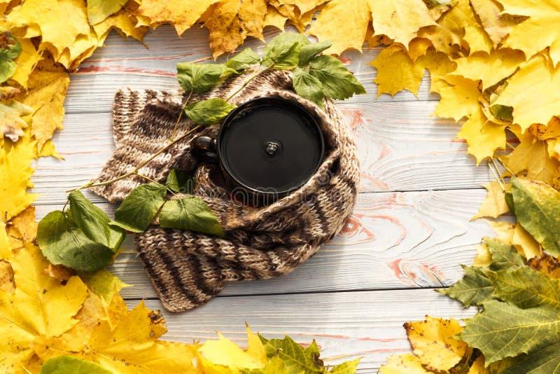 Folhas de outono, copo de chá, transparente escuro, lenço contra o fundo de madeira cinzento imagens de stock