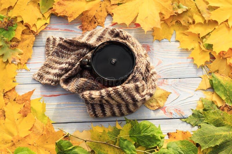 Folhas de outono, copo de chá, transparente escuro, lenço contra o fundo de madeira cinzento fotografia de stock royalty free