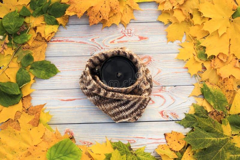 Folhas de outono, copo de chá, transparente escuro, lenço contra o fundo de madeira cinzento fotos de stock royalty free