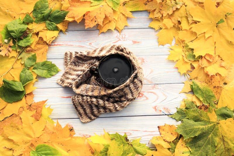 Folhas de outono, copo de chá, transparente escuro, lenço contra o fundo de madeira cinzento fotografia de stock
