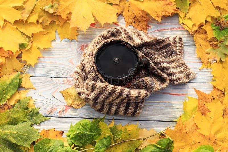 Folhas de outono, copo de chá, transparente escuro, lenço contra o fundo de madeira cinzento imagem de stock royalty free
