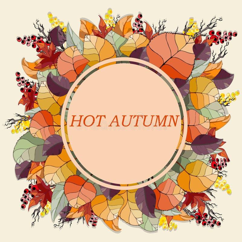 Folhas de outono do quadro fotos de stock