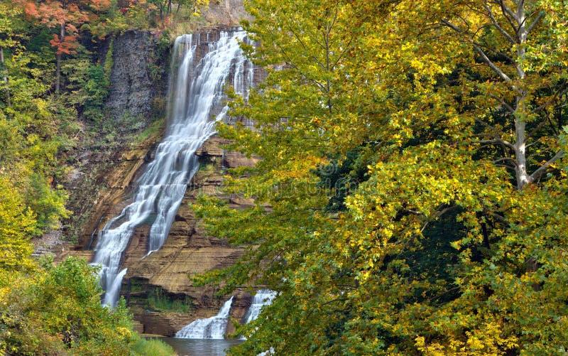 Folhas de outono em Ithaca Falls em New York rural fotografia de stock