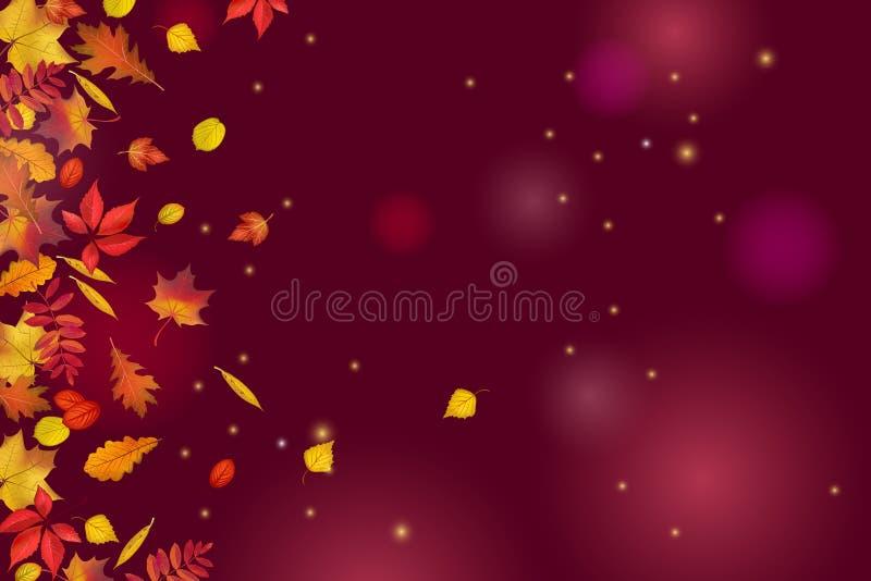 Folhas de outono isoladas no fundo bonito do marrom escuro com luzes e sparkles ilustração stock