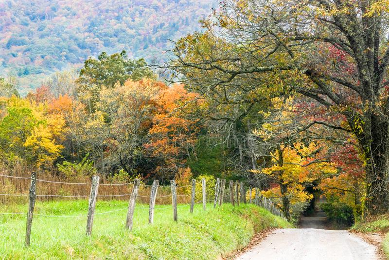 Folhas de outono na pista das faíscas nas montanhas fumarentos imagem de stock