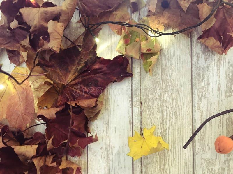 Folhas de outono naturais coloridas marrons vermelhas do quadro e do amarelo, bordo no fundo de placas de madeira O fundo Textura foto de stock