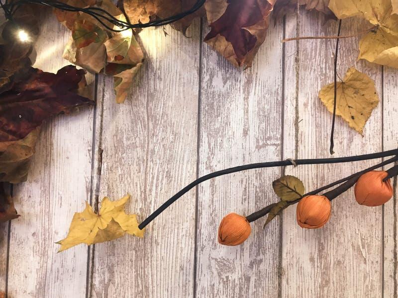 Folhas de outono naturais coloridas marrons vermelhas do quadro e do amarelo, bordo no fundo de placas de madeira O fundo Textura foto de stock royalty free