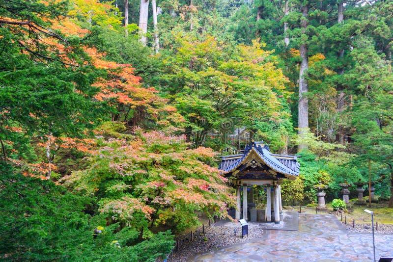 Folhas de outono no templo de Taiyuin, Nikko Japão fotografia de stock