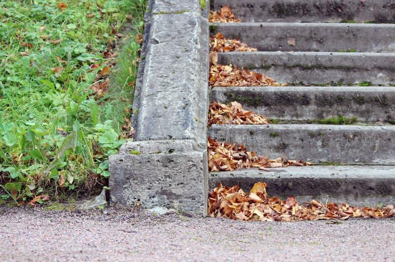folhas de outono secas nas etapas de pedra fora imagens de stock