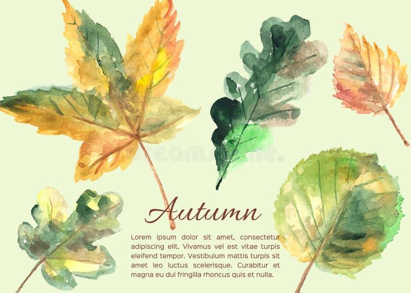 Folhas de outono tiradas mão ilustração royalty free