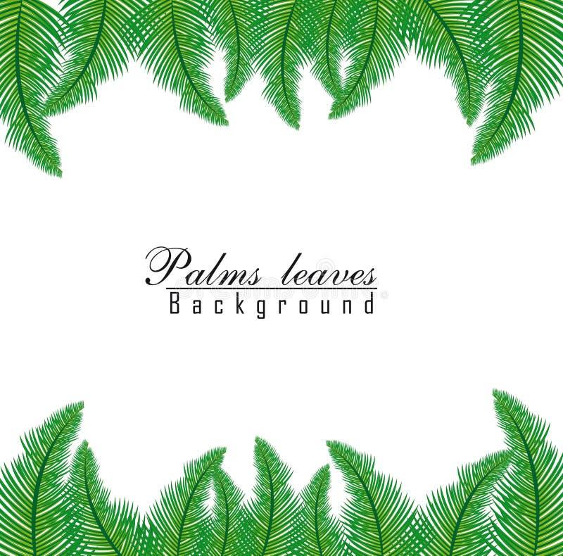 Folhas de palmeira ilustração royalty free
