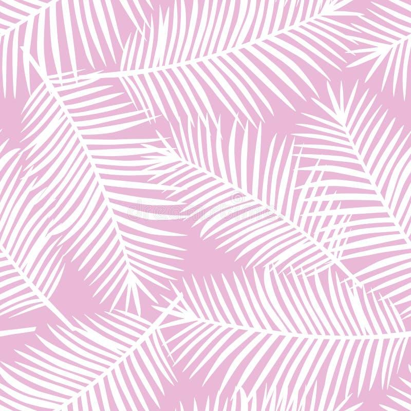 Folhas de palmeira brancas em um SE tropical exótico de Havaí do fundo cor-de-rosa ilustração stock