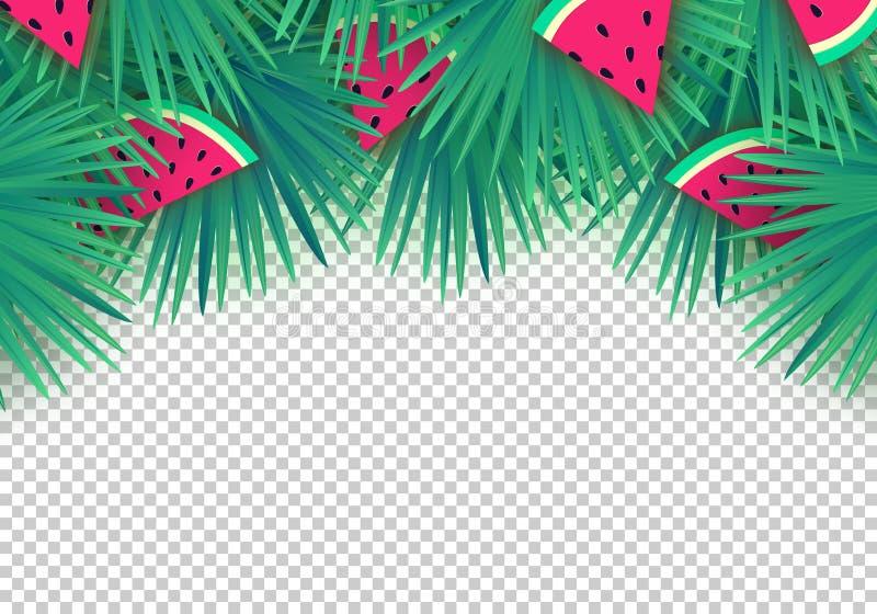 Folhas de palmeira do verão do vetor com fatias da melancia no fundo transparente Quadro tropical na moda ilustração royalty free