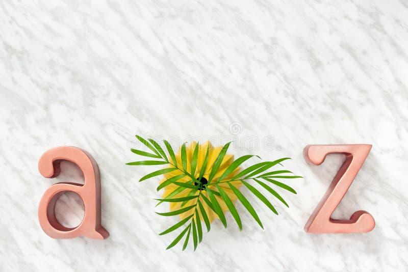 Folhas de palmeira e decoração das letras do metal imagem de stock royalty free