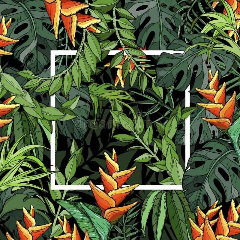 Folhas de palmeira e pássaro da flor de paraíso, fundo tropical com folha da selva e quadro branco ilustração stock