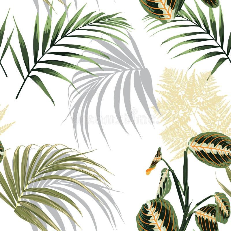 Folhas de palmeira e plantas tropicais Teste padrão sem emenda do papel de parede exótico da praia ilustração do vetor
