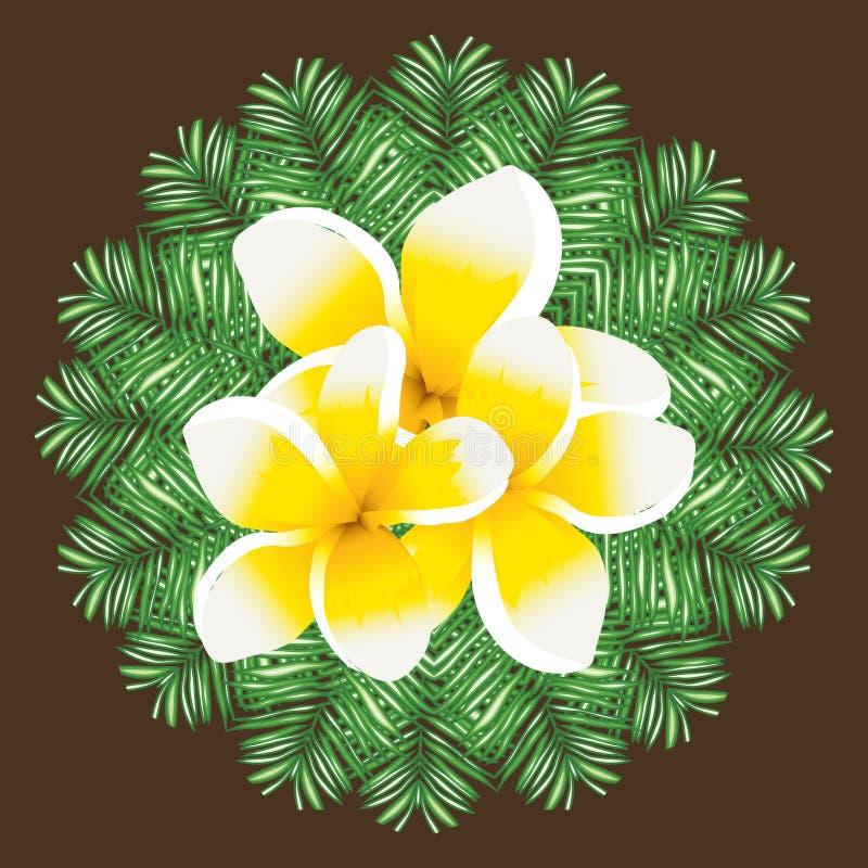 Folhas de palmeira sem emenda do teste padrão do vetor do Plumeria ilustração stock