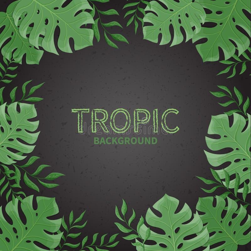 Folhas de palmeira tropicais do verão em um fundo preto ilustração stock