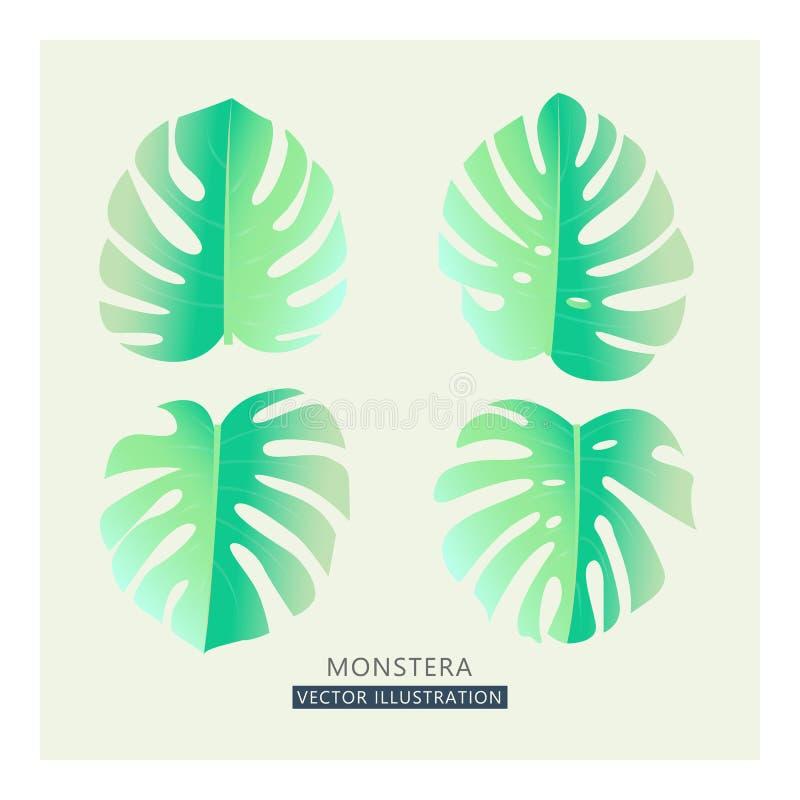 Folhas de palmeira tropicais do vetor Desenho rachado em cores pastel macias, estilo da folha do vintage ilustração stock