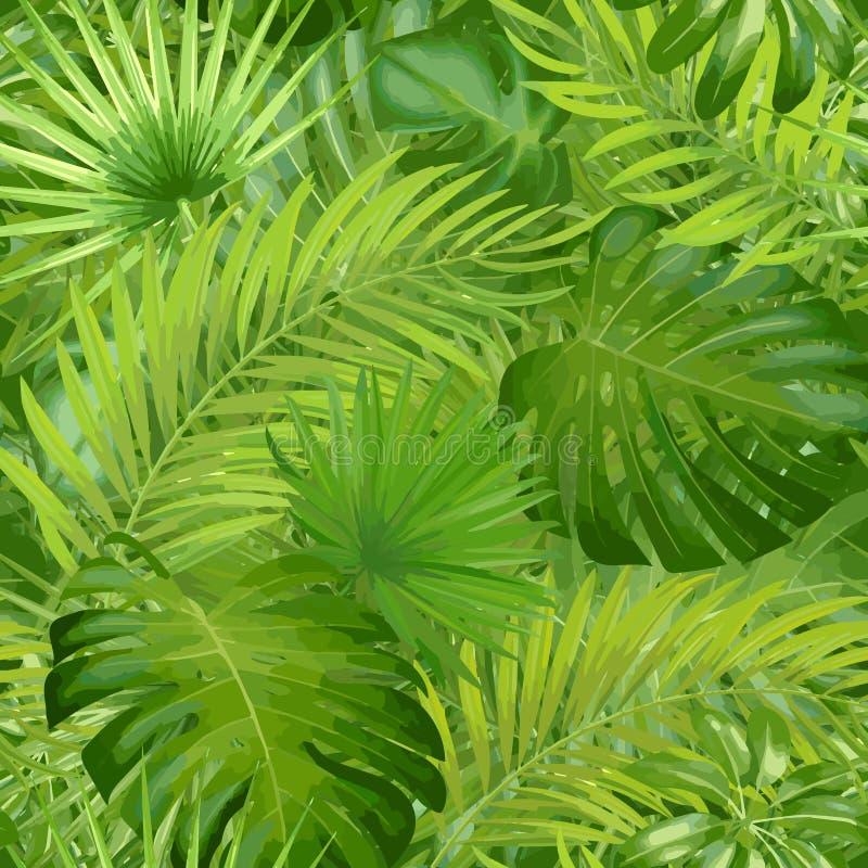 Folhas de palmeira tropicais, fundo floral do teste padrão do vetor sem emenda da folha da selva ilustração royalty free