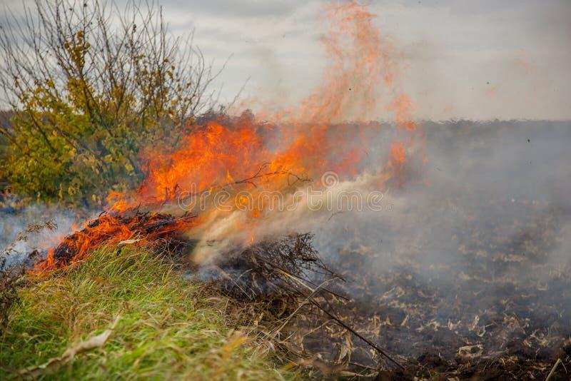 Folhas de queimadura, fogo ao limpar o jardim Tarefas do outono na exploração agrícola fotografia de stock