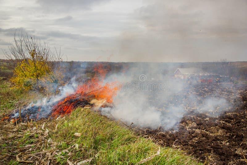 Folhas de queimadura, fogo ao limpar o jardim Tarefas do outono na exploração agrícola imagens de stock royalty free