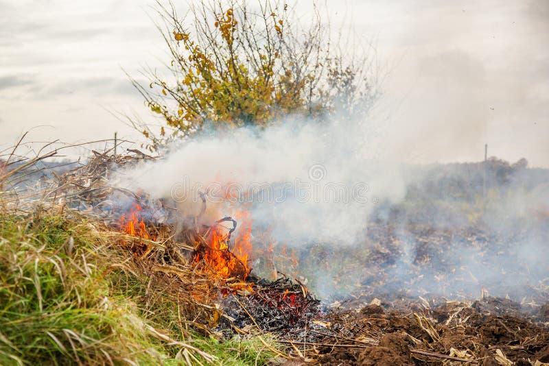 Folhas de queimadura, fogo ao limpar o jardim Tarefas do outono na exploração agrícola foto de stock royalty free