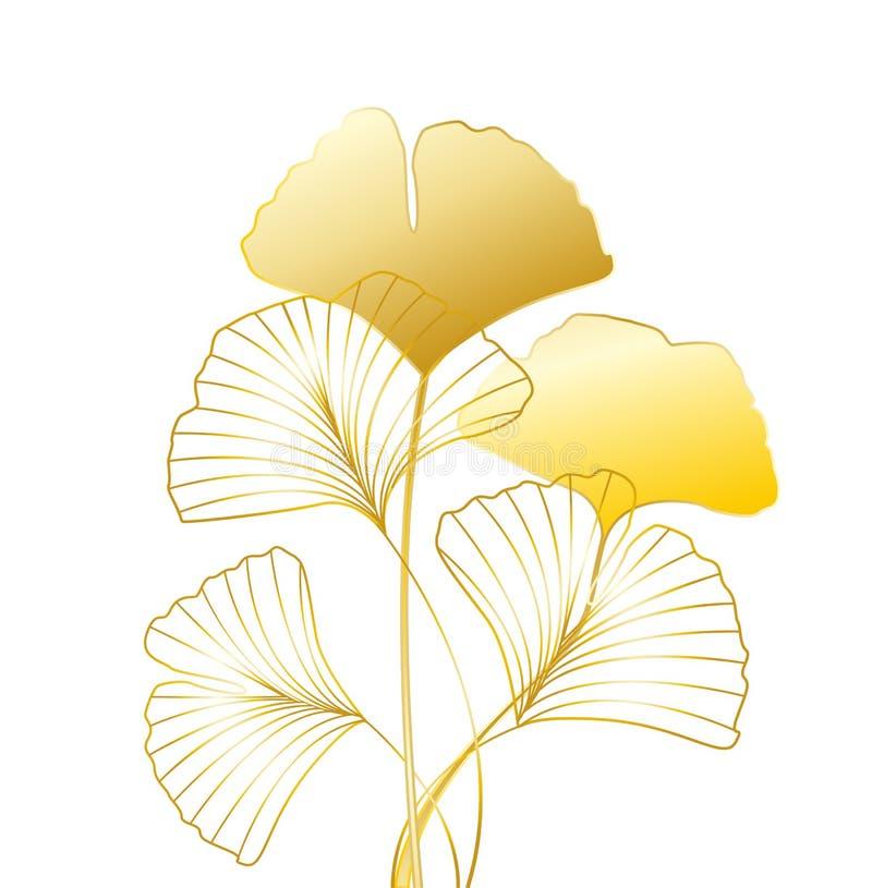 Folhas do biloba do Ginkgo ilustração royalty free