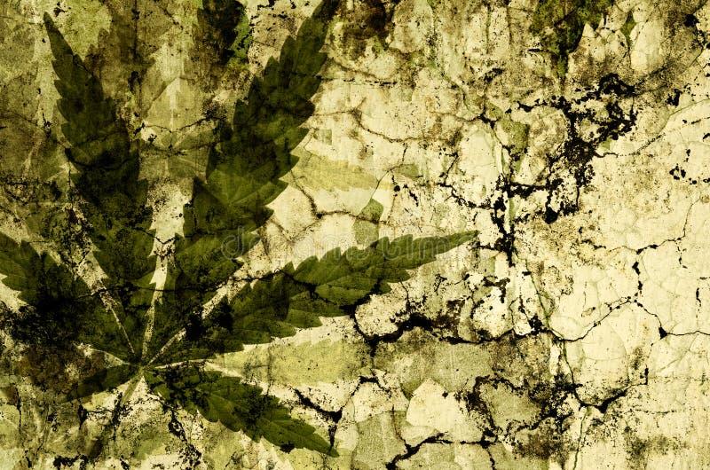 Folhas do cannabis sobre a textura do grunge imagem de stock