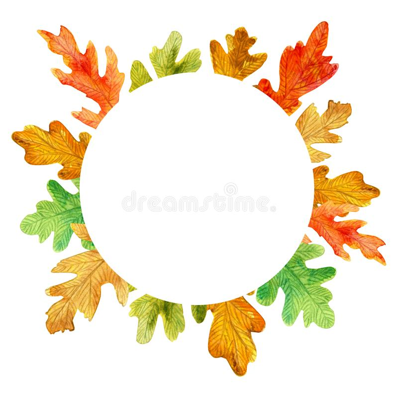 Folhas do carvalho do outono da aquarela Quadro do círculo no fundo branco ilustração royalty free