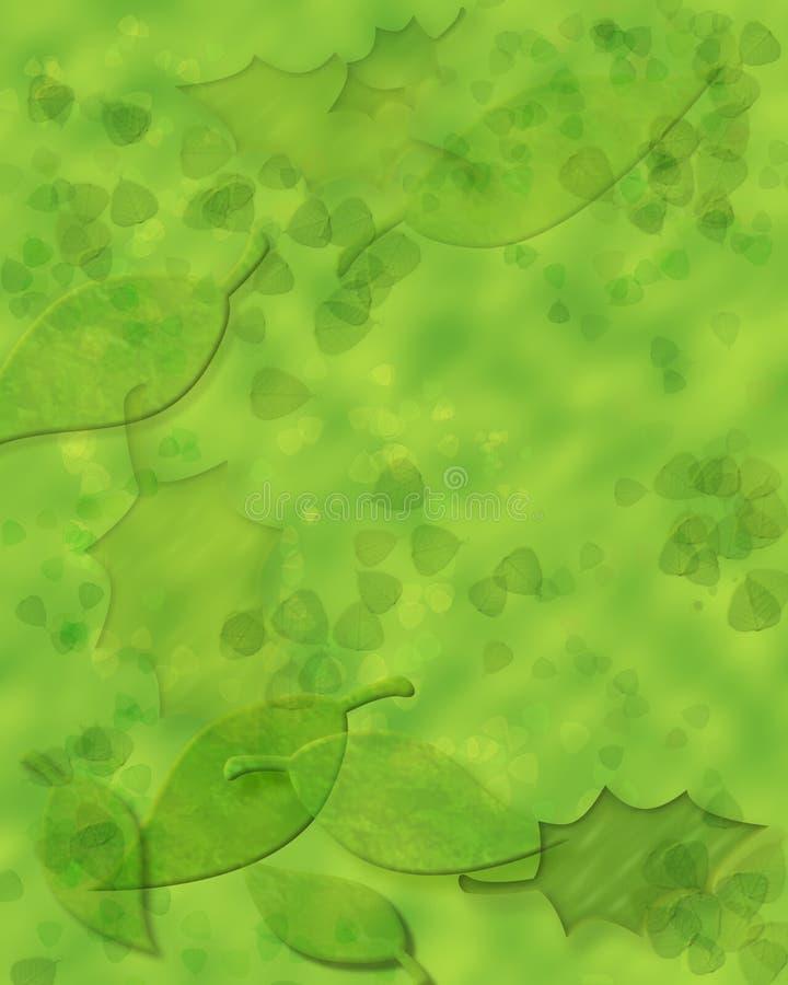 Folhas do verão ilustração do vetor