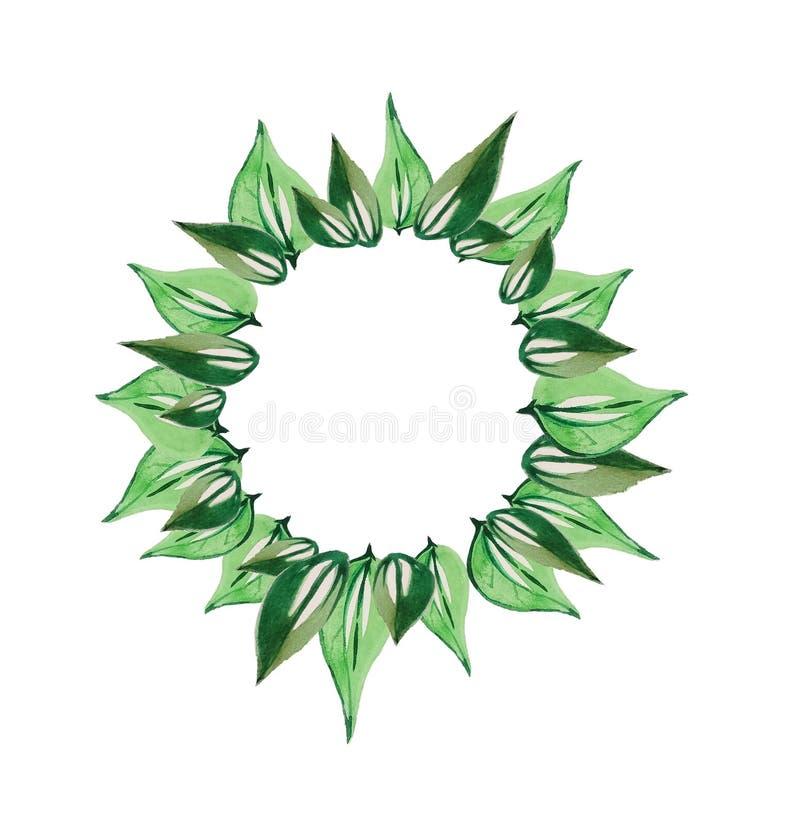 Folhas do verde da grinalda imagem de stock