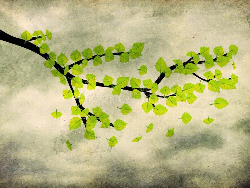 Folhas do verde na refeição matinal no fundo do grunge