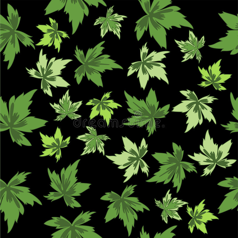 Folhas do verde no fundo preto. Sem emenda. ilustração do vetor